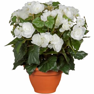 Kunstplant Begonia Wit - H 37cm - Terracotta sierpot - Mica Decorations