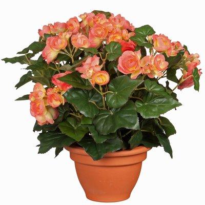 Künstliche Pflanze Begonie Lachs - H 37cm - Terrakottatopf - Mica Decorations