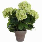 Kunstplant Hortensia Groen / Crème - H 45cm - Keramiek sierpot - Mica Decorations