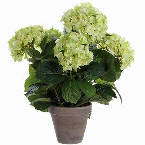 Künstliche Pflanze Hortensie Grün / Creme - H 45cm - Keramiktopf - Mica Decorations