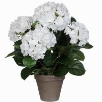 Kunstplant Hortensia Wit - H 45cm - Keramiek sierpot - Mica Decorations