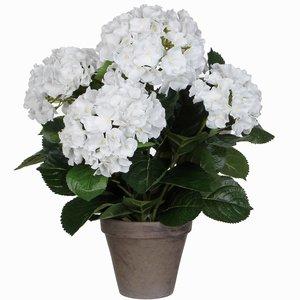 Künstliche Pflanze Hortensie Weiß - H 45 cm - Keramiktopf - Mica Decorations