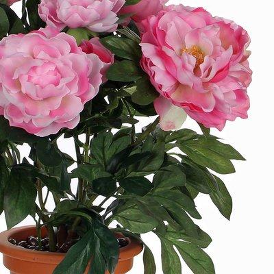 Künstliche Pflanze Pfingstrosen Rosa - H 50cm - Keramiktopf- Mica Decorations