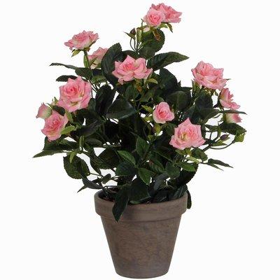 Künstliche Pflanze Rosebush Rosa - H 33cm - Keramiktopf - Mica Decorations