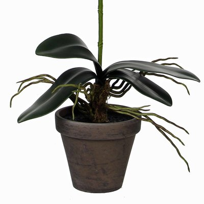 Kunstplant Orchidee Phalaenopsis Paars - H 48cm - Keramiek sierpot - Mica Decorations