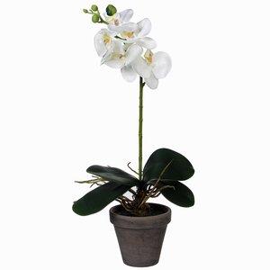 Kunstplant Orchidee Phalaenopsis Wit - H 48cm - Keramiek sierpot - Mica Decorations