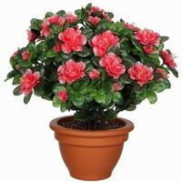 Künstliche Pflanze Azalee Pfirsich - H 35cm - Terrakottatopf - Mica Decorations