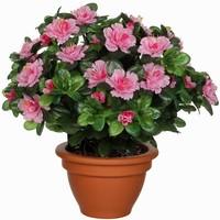 Künstliche Pflanze Azalee Rosa - H 35cm - Terrakottatopf - Mica Decorations