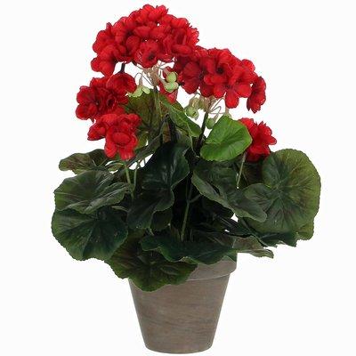 Künstliche Pflanze Geranie Rot - H 34 cm - Keramiktopf - Mica Decorations