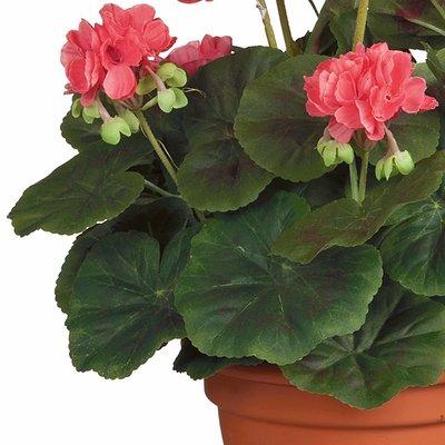 Künstliche Pflanze Geranie Lachs - H 35cm - Keramiktopf - Mica Decorations