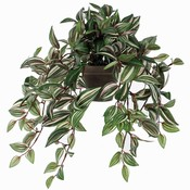 Kunstplant Tradescantia Groen-bont - L 45cm - Keramiek sierpot - Mica Decorations