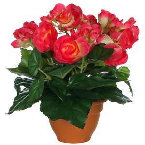 Kunstplant Begonia Donker roze - H 25cm - Terracotta sierpot - Mica Decorations