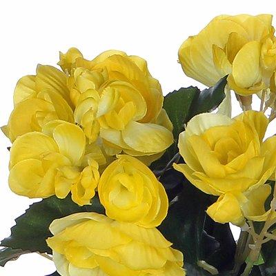 Künstliche Pflanze Begonie Gelb - H 25cm - Terrakottatopf - Mica Decorations
