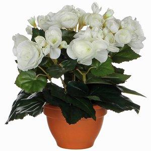 Künstliche Pflanze Begonie Weiß - H 25cm - Terrakottatopf - Mica Decorations