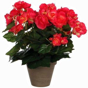Kunstplant Begonia Donkerroze - H 30cm - Keramiek sierpot - Mica Decorations