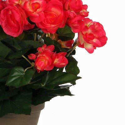 Künstliche Pflanze Begonie Dunkelrosa - H 30cm - Keramiktopf - Mica Decorations