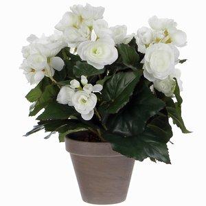 Kunstplant Begonia Wit - H 30cm - Keramiek sierpot - Mica Decorations