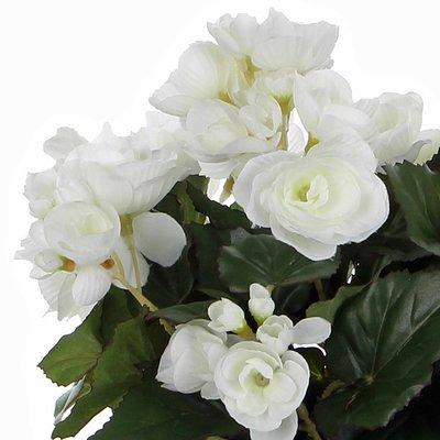Künstliche Pflanze Begonie Weiß - H 30cm - Keramiktopf - Mica Decorations