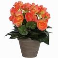 Kunstplant Begonia Zalm - H 30cm - Keramiek sierpot - Mica Decorations