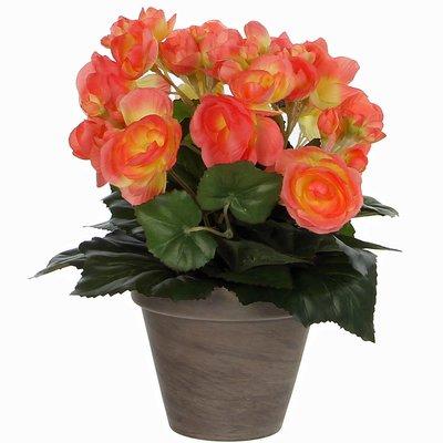 Künstliche Pflanze Begonie Lachs - H 30cm - Keramiktopf - Mica Decorations