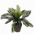 Kunstplant Palm Cycas Groen - H 33cm - Keramiek sierpot - Mica Decorations