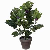 Künstliche Pflanze Fig Grün - H 50cm - Keramiktopf - Mica Decorations