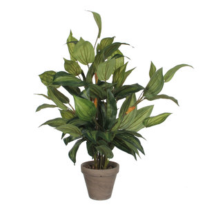 Kunstplant Hosta Groen - H 65cm - Keramiek sierpot - Mica Decorations