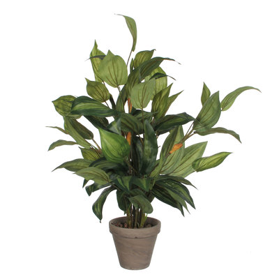 Künstliche Pflanze Hosta Grün - H 65cm - Keramiktopf - Mica Decorations