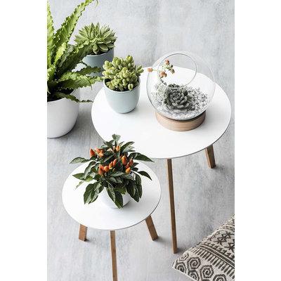Set mit 3 Pflanzentischen - Weiß - Größte Größe H45cm / D48cm - Mica Decorations