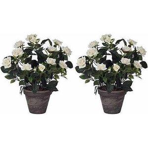 2 Stück - Pflanze Rosebush Weiß - H 33cm - Keramiktopf - Mica Decorations