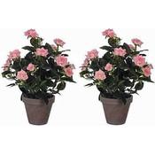 2 Stück - Pflanze Rosebush Rosa - H 33cm - Keramiktopf - Mica Decorations