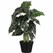 Kunstplant Alocasia Groen - H 60cm - Kunststof sierpot - Mica Decorations