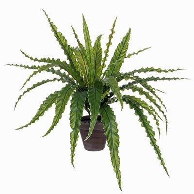 Künstliche Pflanze Asplenium Grün - H 54cm - Keramiktopf - Mica Decorations