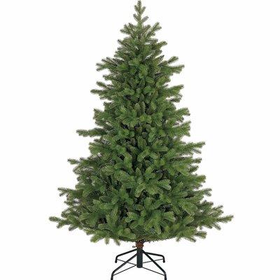 Tanoak - Groen - Black Box kunstkerstboom