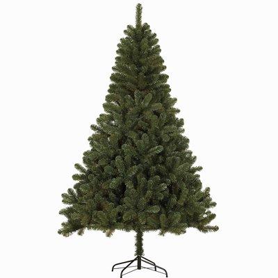 Casaya Brixen - Grün - (Canmore BlackBox) künstlicher Weihnachtsbaum