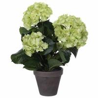 Kunstplant Hortensia Groen / Crème- H 40cm - Keramiek sierpot - Mica Decorations