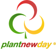 Plant New Day