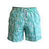 Swim Shorts, Hula Dancing - Pale Blue