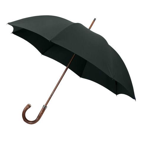 Umbrella Chestnut - Green