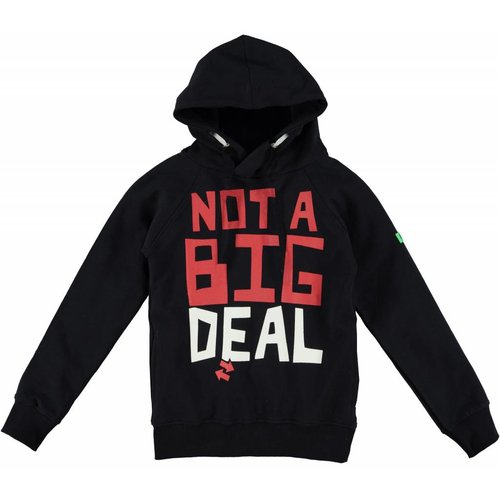 B'Chill B'Chill hoodie Not a Big Deal