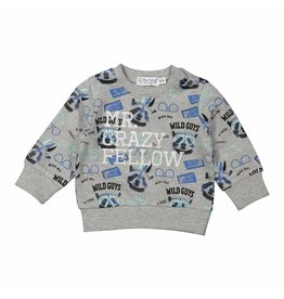 Dirkje Dirkje baby jongens sweater Mr. Crazy Fellow