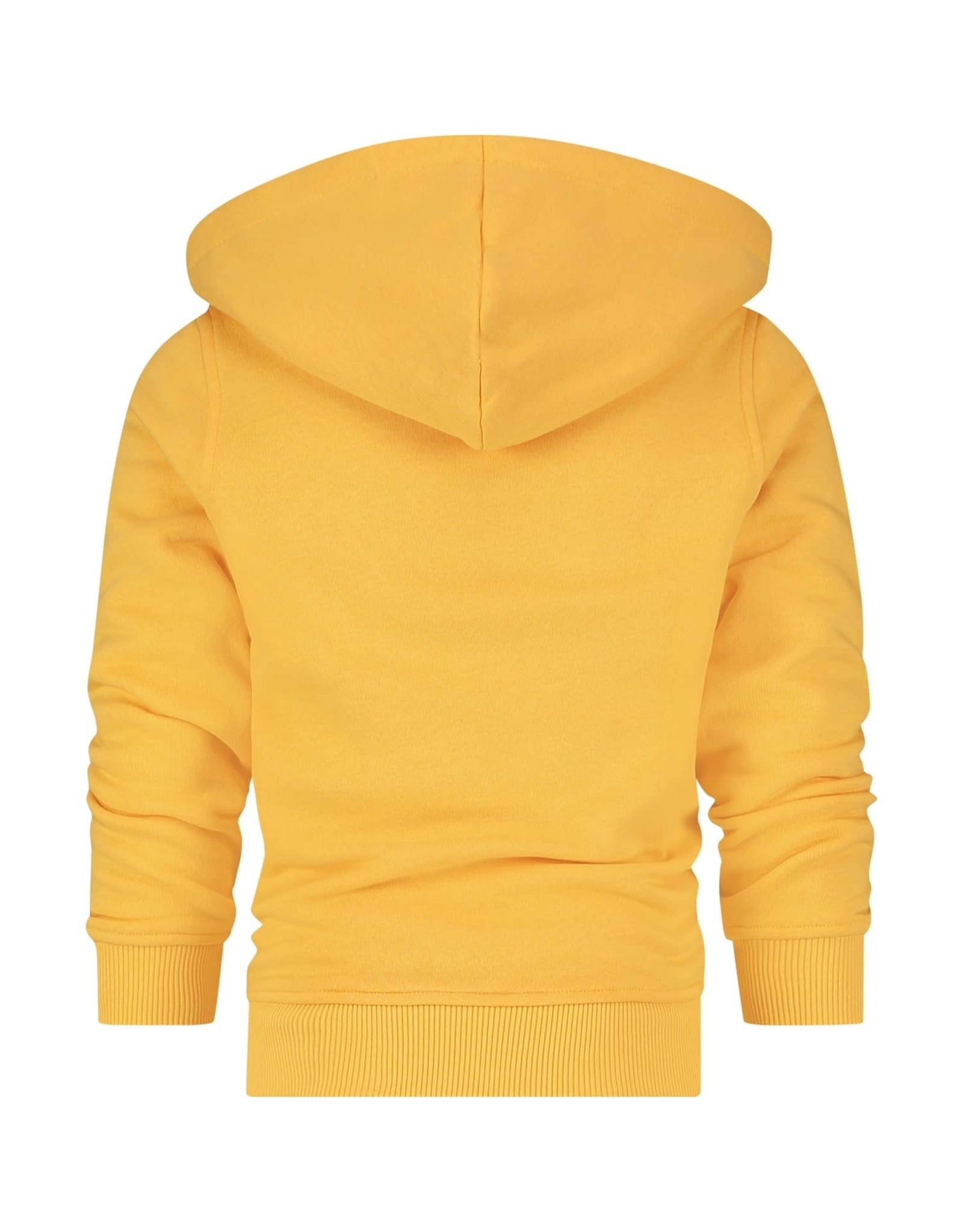 Raizzed Raizzed jongens hoodie Norwich Mustard Yellow