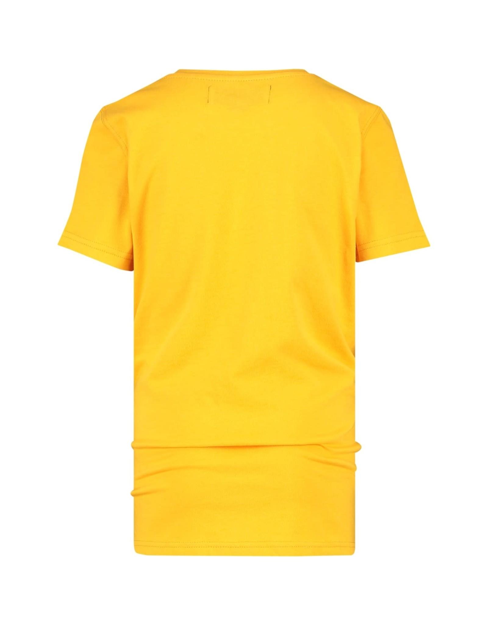 Raizzed Raizzed jongens t-shirt Hamilton Moon Yellow