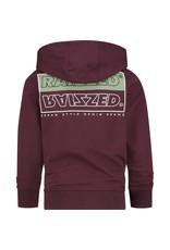 Raizzed Raizzed jongens hoodie New Castle Maroon Red