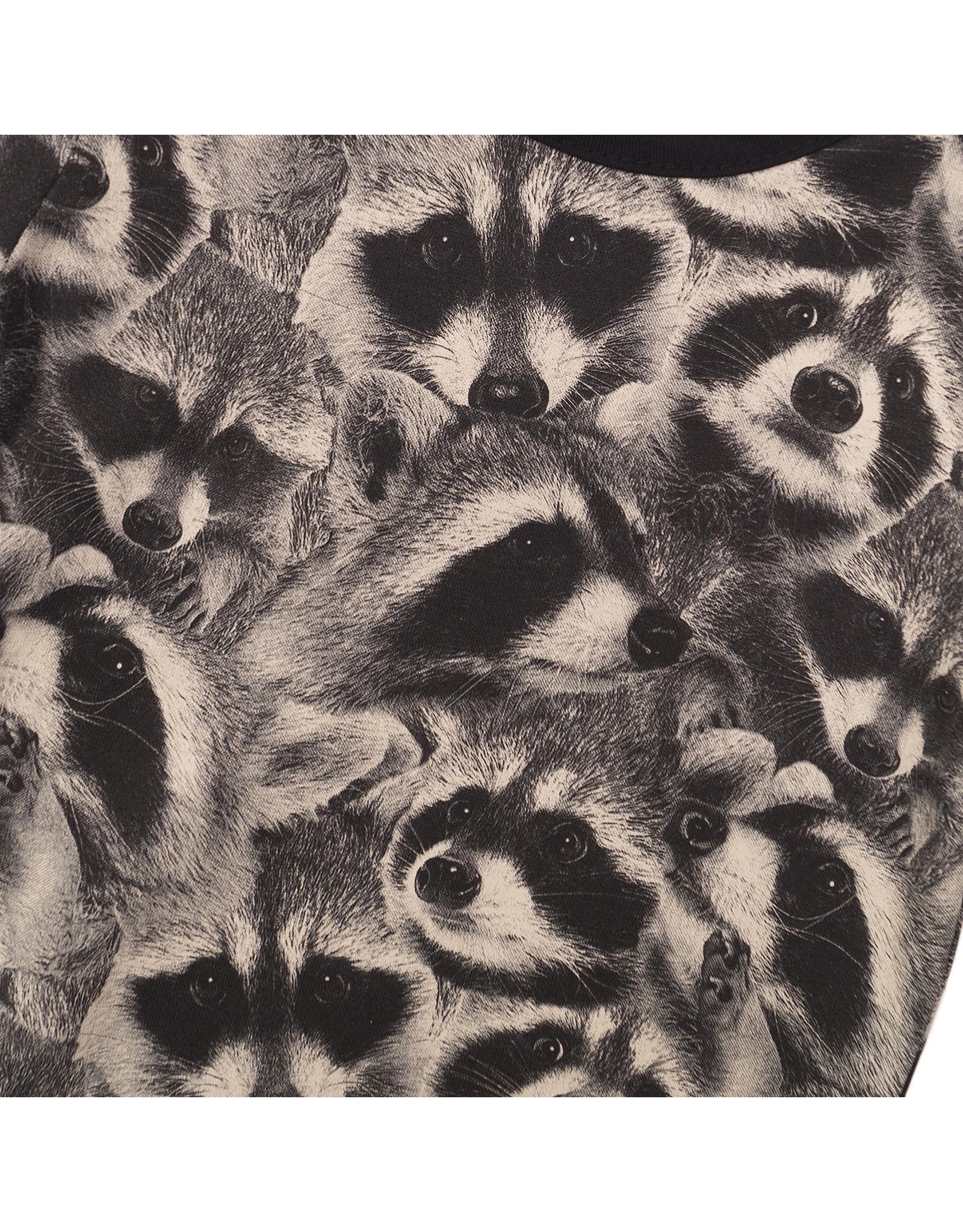 Koko Noko Koko Noko jongens t-shirt raccoons Dark Grey