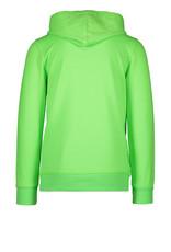 TYGO & vito TYGO & vito jongens hoodie Nexterday Green Gecko