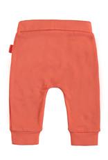 Bampidano Bampidano newborn joggingbroek Daley Coral