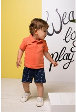 Bampidano Bampidano baby jongens korte joggingbroek Dario Indigo AO