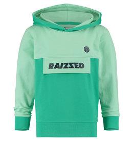 Raizzed Raizzed jongens hoodie Norwich Pastel Leaf