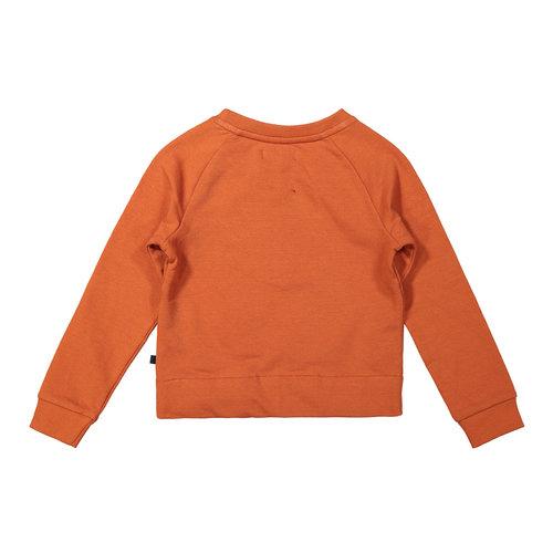 DJ Dutchjeans DJ Dutchjeans meisjes sweater Find Your Way Rusty Brown